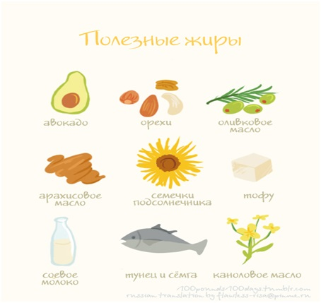 nutricit-11