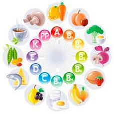 nutricit-15