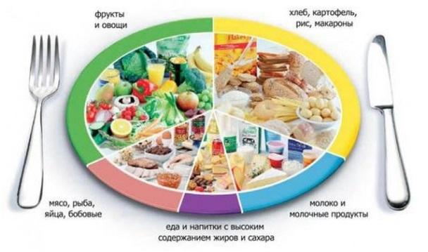 nutricit-7