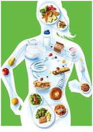 nutricit-9